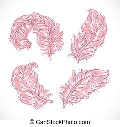 rózsaszínű, buja, bolyhos, horgol, elszigetelt, strucc, nagy...