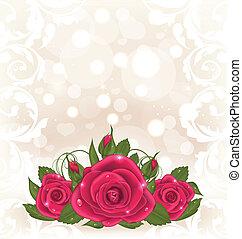 rózsaszínű, csokor, fényűzés, kártya, agancsrózsák