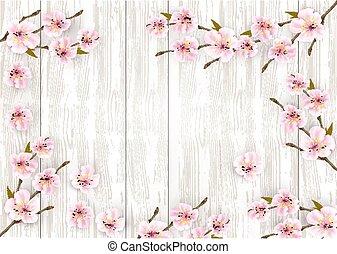 rózsaszínű, fából való, cseresznye, háttér., vektor, sakura, elágazik, japán, menstruáció