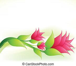 rózsaszínű, flowers., vektor, finomság, ábra