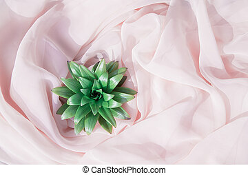 rózsaszínű, háttér., virág, zöld