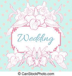 rózsaszínű, kék, white háttér, orhidea