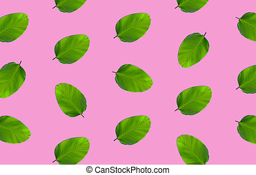 rózsaszínű, motívum, zöld, zöld