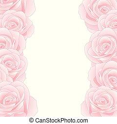 rózsaszínű rózsa, határ
