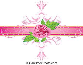 rózsaszínű rózsa, ornament., határ