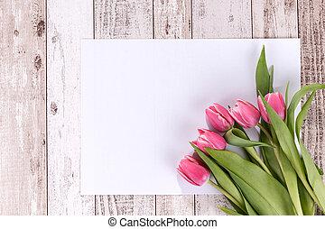 rózsaszínű, tulipánok, képben látható, fából való, háttér, noha, egy, fehér, kártya