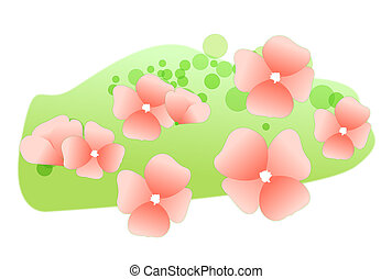 rózsaszínű, vad virág, képben látható, a, pázsit