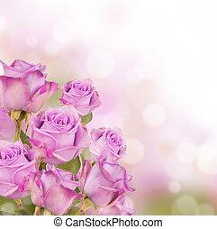 rózsaszín rózsa, csokor, noha, szabad, hely, helyett, szöveg