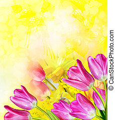 rózsaszín sárga, menstruáció, tulipánok, és, nárciszok