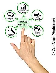 rôle, étude de marché