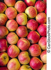 röd, apples.