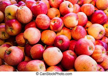 röd, delicous, äpplen, hos, marknaden