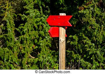 röd, pilar, visar, den, riktning