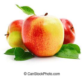 rött äpple, frukter, med, grönt lämnar