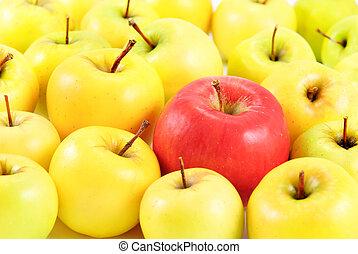 rött äpple, mellan, gul, äpplen, som, olik, begrepp