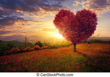 rött hjärta, format, träd