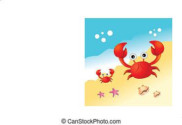 rød, krabbe