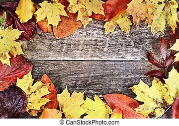 rústico, otoño sale, plano de fondo