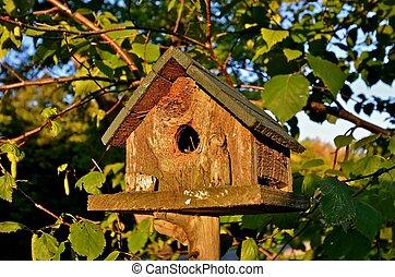 rústico, reyezuelo, birdhouse