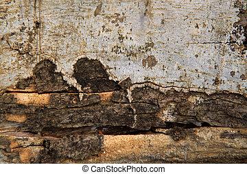 rústico, textura madeira