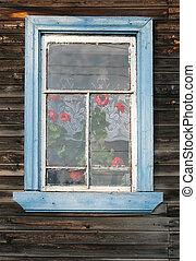 rústico, ventana, pelargonium