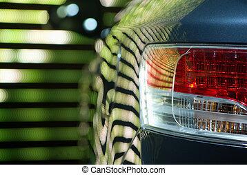 rückseite, auto- licht