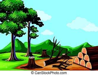rąbany, drewna, las, scena