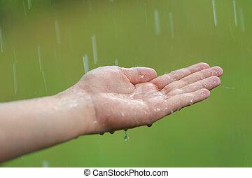 ręka, deszcz, pod