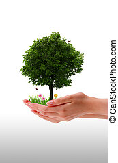 ręka, drzewo, -