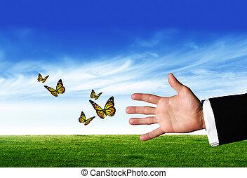 ręka, z, motyle
