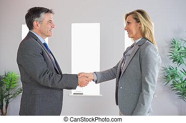 ręka, zadowolenie, biznesmen, kobieta interesu, potrząsanie, zadowolony