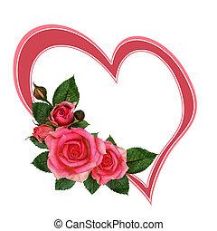 růže, květiny, a, nitro
