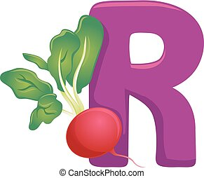R for Radish Illustration