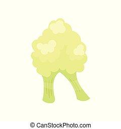 R veggie vegetable English alphabet letter made from cauliflower vector Illustration on a white background