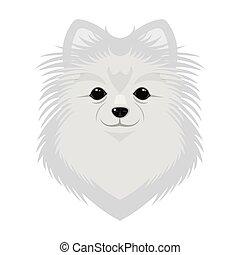 raça, de, um, cão, spitz.muzzle, spitz, único, ícone, em,...