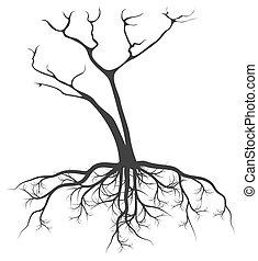 raíces, vector, árbol, plano de fondo, muerto