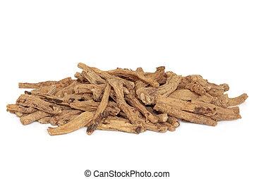 raíz, codonopsis