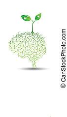 raíz, planta, vector, joven, cerebro