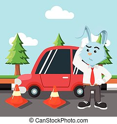 rabbit car get road coned