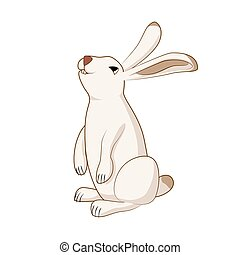 Rabbit, cute hare, bunny isolated vector illustration
