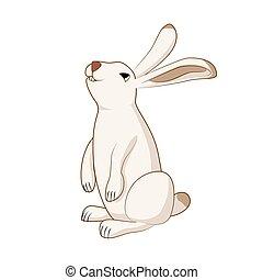 Rabbit, cute hare, bunny isolated vector illustration