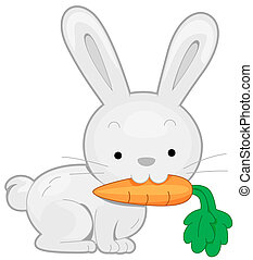 Rabbit - A Rabbit Carrying a Carrot With its Teeth
