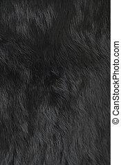 Rabbit fur | Texture - Black rabbit fur texture. Part of the...