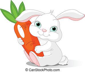 Rabbit holds giant carrot - Small lovely rabbit holds giant...