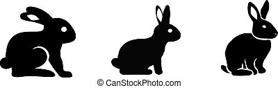rabbit icon on color background