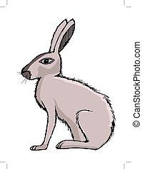 rabbit, illustration of farm animal, symbol of Easter, pet