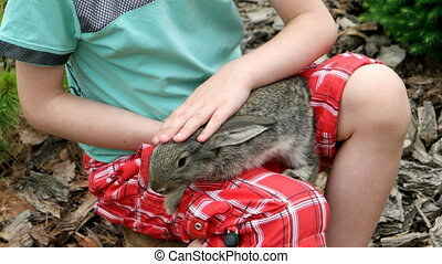 Rabbit is Beautiful animal of Nature - Child playing with...
