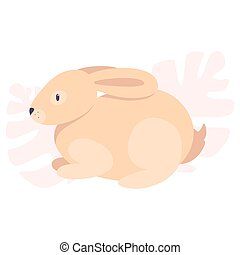 rabbit., largo, animal, conejito, adorable, lindo, divertido, pequeño, ears.