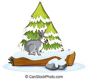 Rabbit on wooden log