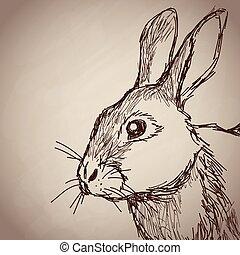 rabbit portrait forest hand drawing vintage